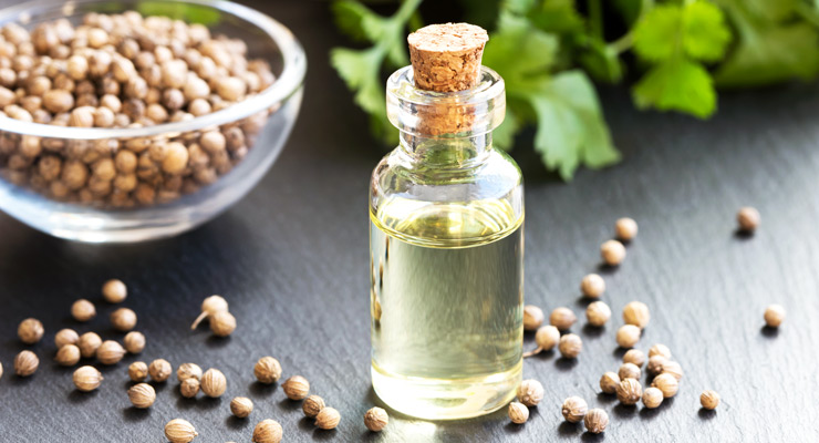 Coriander Seed Oil: Beauty from Within for Sensitive Skin