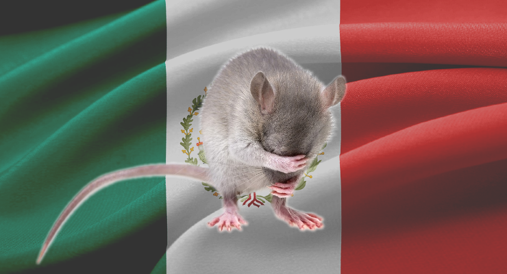 Mexico Bans Animal Testing for Cosmetics