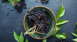 Taiyo Partners with NutriScience to Supply ElderMune Elderberry