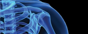 Strengthening the Bone Health Market