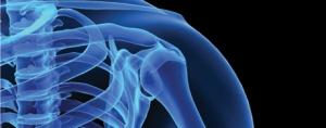 Strengthening the Bone Health Market