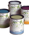 Interior Decorative Coatings