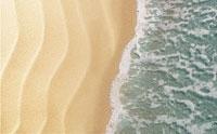 Lipotec Debuts Marine Line Eraser