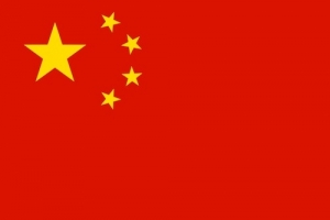 Report: The Chinese Orthopedic Industry, 2013-2015
