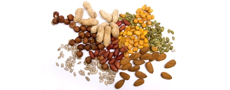 Increasing Vitamin E Intake