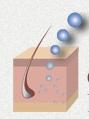 Incorporating Genomics into Skin Care Development