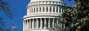 Capitol Comments: Congress & Food Safety Reform