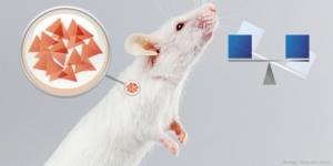 Sensitive Acid Sensor Controls Insulin Production
