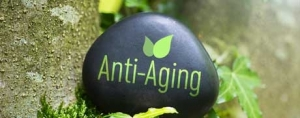 Nutritional Interventions for the Aging Process