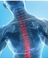 Stabilizing the Spine