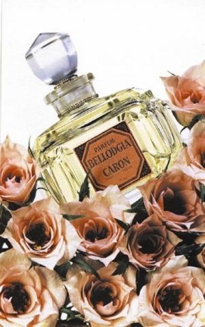 Bergdorf Goodman Picks Up Caron Paris