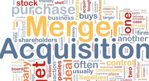 M&A Activity: What They Can Bring to the Table
